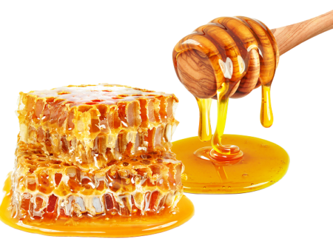 Bulk_Organic_Honey_Exporter