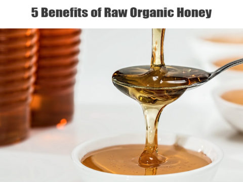 5 Benefits of Raw Organic Honey