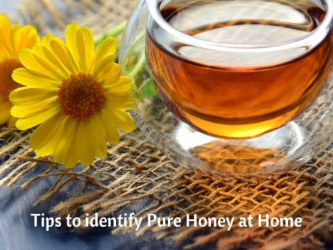 top raw honey brands Archives - Allied Natural Product